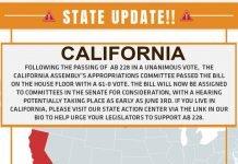 hemp news california