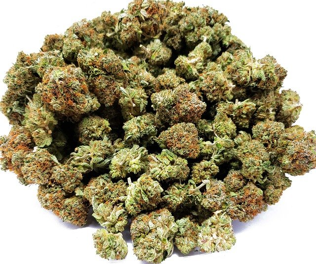 Weed 101: What is a Zip of Weed and How Much Does It Go ...