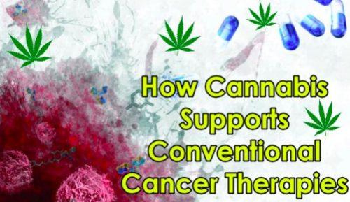 cancer and cannabis