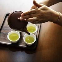 benefits cannabis tea
